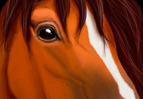 Ultimate Horse Simulator для Android: симулятор лошади